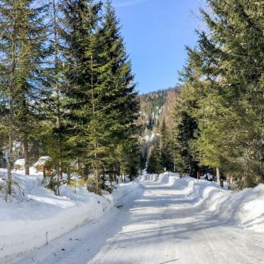 Außen Winter 22, Chalet Tom, Sirnitz - Hochrindl, Hochrindl-Alpl, Kärnten, Österreich