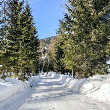 Innen Winter 22, Chalet Tom, Sirnitz - Hochrindl, Hochrindl-Alpl, Kärnten, Österreich