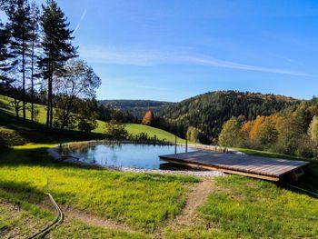 Ferienchalet Feichtinger - Lower Austria - Austria