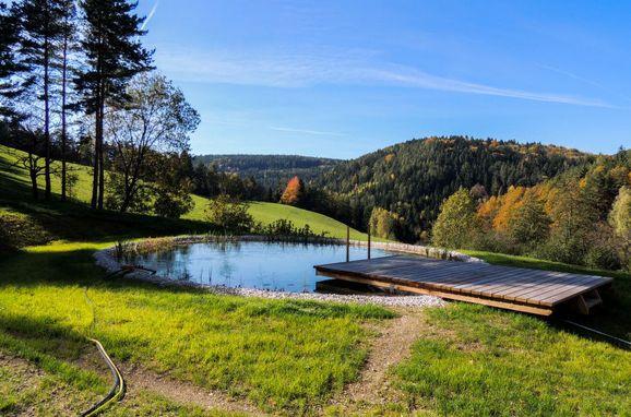 Outside Summer 1 - Main Image, Ferienchalet Feichtinger, Prigglitz, Niederösterreich, Lower Austria, Austria