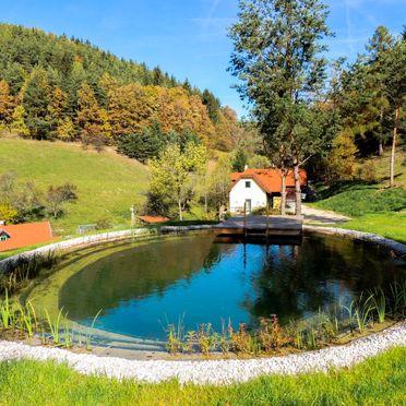 Außen Sommer 3, Ferienchalet Feichtinger, Prigglitz, Niederösterreich, Niederösterreich, Österreich