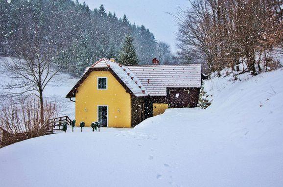Außen Winter 25, Ferienchalet Feichtinger, Prigglitz, Niederösterreich, Niederösterreich, Österreich