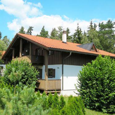 Innen Sommer 3, Waldchalet Regen, Regen, Bayerischer Wald, Bayern, Deutschland