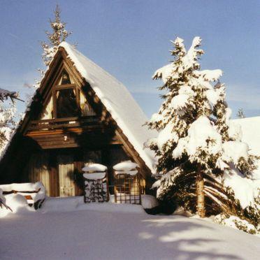 Außen Winter 13, Schwarzwald-Chalet Tennenbronn, Tennenbronn, Schwarzwald, Baden-Württemberg, Deutschland