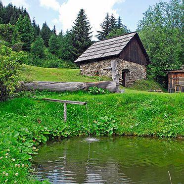 Außen Sommer 3, Berghütte Kochhube, Hirschegg - Pack, Steiermark, Steiermark, Österreich